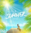 Summer Holidays design vector image