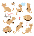 Set of cartoon cute cats vector image vector image