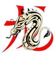Dragon with Chinese hieroglyph vector image