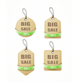recycled paper labels with green ribbon set vector image
