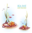 decorative corals and vector image