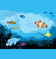ocean underwater world with tropical animals vector image