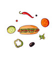 flying food ingredients and hot dog set vector image