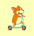 isolated cute dog on kick vector image