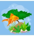 Underwater world background with fish vector image