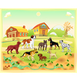 Landscape with group of dogs vector image