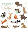 Set of funny Mixed Breed dogs vector image