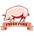 fresh pork pig with ribbon vector image