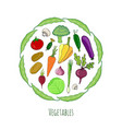 vegetables hand drawn set isolated doodle vector image