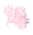 A view of a coral reef vector image