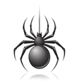 Black spider emblem vector image