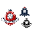 Volleyball game sports banner or emblem vector image vector image