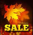 autumn sale background with leaf texture on the vector image