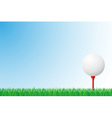 Sports grass field 02 vector image