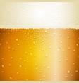 Water drops on beer background vector image