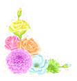 decorative element with delicate flowers object vector image