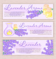 hand drawn banner with lavender and oil burner vector image