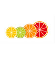 collection of citrus slices grapefruit lime vector image vector image
