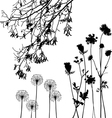 collection for designers plant vector image vector image