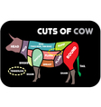 Cuts of beef vector image