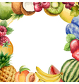 Watercolour fruit frame for your design vector image