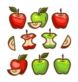 red and green apples set vector image