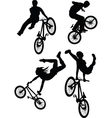 bmxer vector image vector image