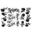 Black floral design element vector image vector image