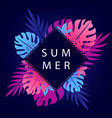 beautiful summer background vector image