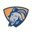 Ram Mountain Goat Shield vector image vector image