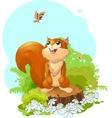 squirrel vector image