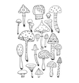 Art mushrooms set sketch for your design vector image vector image
