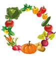 eco food menu background hand drawn vegetables vector image