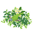 green parrot on tree branch vector image
