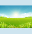 summer meadow field nature background with sun vector image