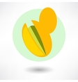 pistachios cartoon vector image