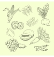 Collection of hand-drawn vegetables and fruits vector image
