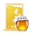 jar with honey and honeycomb vector image