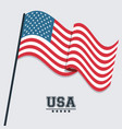 usa flag waving symbol celebraton patriotism vector image