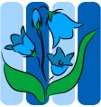 bellflower illustration vector image