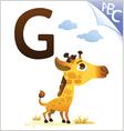 Animal alphabet for the kids G for the Giraffe vector image vector image