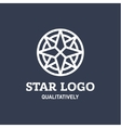 Star Polaris sharp white flat style lights twinkle vector image