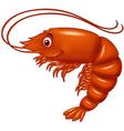 Cartoon cute lobster vector image