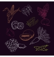 Hand drawn vegetables and hearbs collection vector image