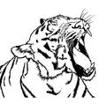 Roaring Tiger vector image vector image