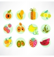 A set of fruit icons vector image vector image