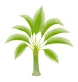 Spreading palm icon cartoon style vector image