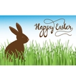 Brown Cute Chocolate bunny in grass easter vector image