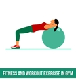 Aerobic icons Ball exercise vector image