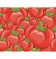 Red tomatoes background vector image